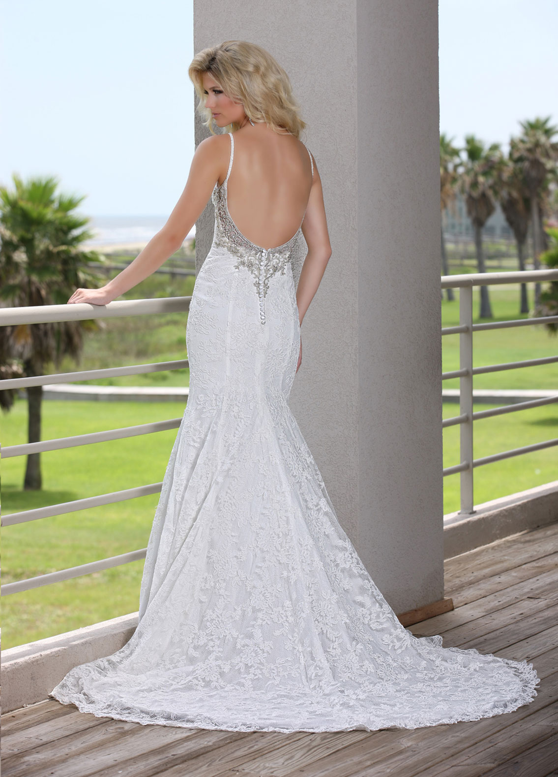 Back view of Style : 50254
